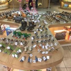 石尚自然探索屋-生物多樣性店