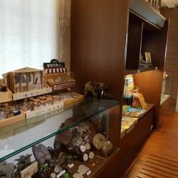 石尚自然探索屋-臺博店